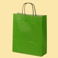 Стандартни хартиени чанти - Хартиена светлозелена EP-500