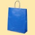 Стандартни хартиени чанти - Хартиена чанта синя EP 800