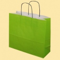 Стандартни хартиени чанти - Хартиена светлозелена EP-700