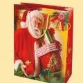 Коледа и Нова година - Дядо КОЛЕДА EP-S 800